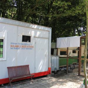 Krankenstation der Kölner Taubenhilfe für Stadttauben