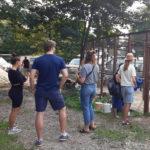 Taubenhilfe Köln zeigt Helfern Arbeit mit Tauben