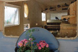 Ausgebaute Wohnwagen als Taubenschlag